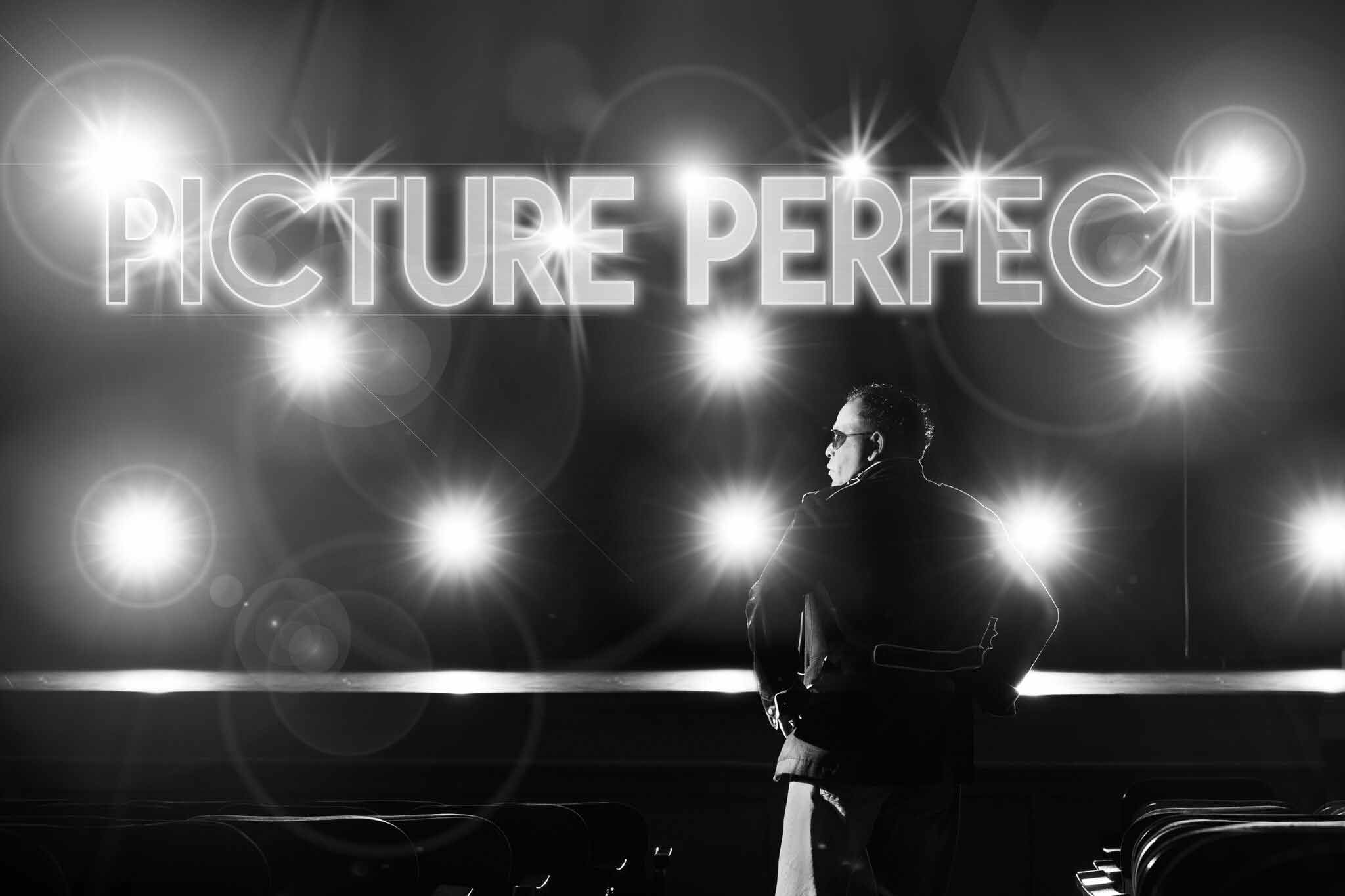 Picture Perfect Launches New Website